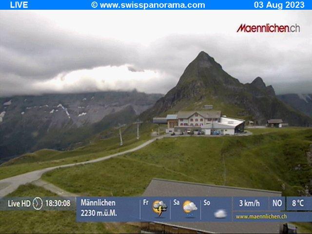 Webcam Männlichen